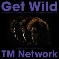 TM NETWORK / Get Wild [LP]