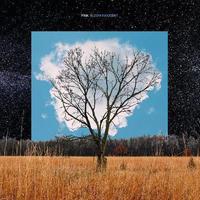FINK / BLOOM INNOCENT [LP]