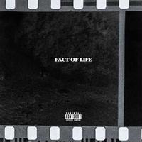 BCDMG / Fact Of Life [CD]