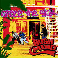 BUSHMIND / Graze The Sky [MIX CD]
