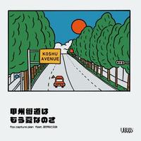 fox capture plan feat.おかもとえみ / 甲州街道はもう夏なのさ-やけにSUNSHINE [7inch]