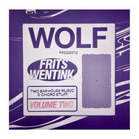 Frits Wentink / Two bar house music and chord stuff Vol.2 [12inch]