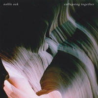 NOBLE OAK / COLLAPSING TOGETHER [CD]