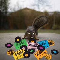 1月下旬入荷予定 - EVIDENCE / SQUIRREL TAPE INSTRUMENTALS VOL. 1 (RANDOM COLORED VINYL) [LP]