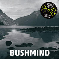 BUSHMIND / 2013 DTW MIX [MIX CDR]