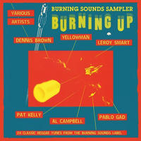 V.A / Burning Up -輸入盤- [CD]