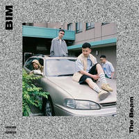 BIM / The Beam [2LP]