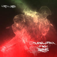 SURRY&SPARKEY / Counterattack From Boonies [CD]