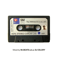 Mr.BEATS a.k.a. DJ CELORY / The Notorious B.I.G. Mix vol.1 [MIX CD]