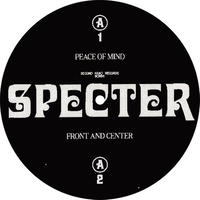Specter / Test Of Time -incl. Byron The Aquarius  Remix- [12inch]