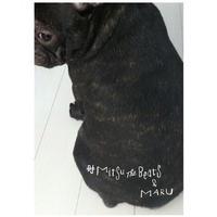 DJ Mitsu The Beats & MARU / INST ALBUM [CD+ZINE]