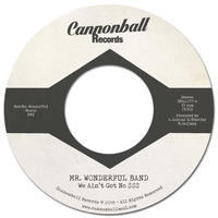 Mr. Wonderful Band / We Ain't Got No $$$ [7INCH]