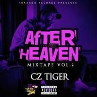 Cz TIGER / AFTER HEAVEN - Mixed By DJ GURI [MIX CD]