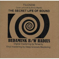 Budamunk / Radius SPLT The SECRET [7INCH]