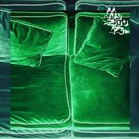 GREEN ASSASSIN DOLLAR / POINT OF THE VIEW [CD]