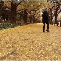 佐野元春 / 或る秋の日 [LP]