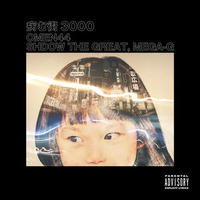 Omen44 / 病む街3000 feat.Mega G,Shadow The Great [7inch]