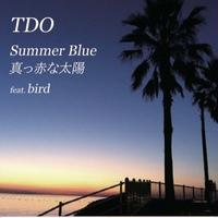 TDO - Summer Blue / 真っ赤な太陽 feat. Bird [7inch]