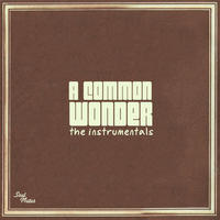 COMMON VS STEVIE WONDER / A COMMON WONDER INSTRUMENTALS [2LP]