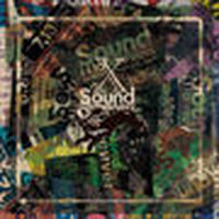 Sound Maneuvers(DJ Mitsu The Beats & DJ Mu-R) / 10th Anniversary Mix [MIX CD]