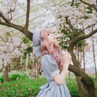 [Baroque] Decent collet セーラーリボンベレー  【ご予約商品】