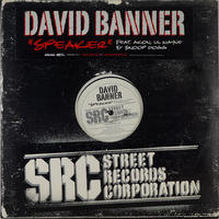 David Banner // Speaker // HD008A