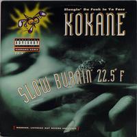 Kokane // Slow Burnin 22.5°F // WK008B