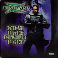 Xzibit // What U See Is What U Get // WX002A