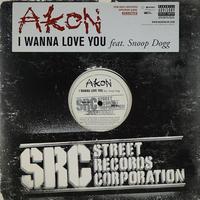 Akon Feat. Snoop Dogg // I Wanna Love You // RA034A