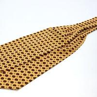 Adamley Wool Ascot Tie/Paisley