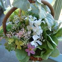 minibasquet SPRING お花のリクエスト伺います