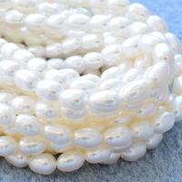 淡水パール ホワイト ライス 4~4.5mm