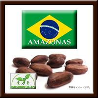 310223 / ブラジル産カカオ豆(AMAZONAS) / 1.5㎏