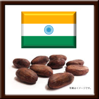 310279 / インド産カカオ豆 / 5㎏窒素ガス充填袋