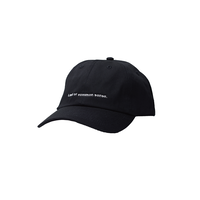 Lack of common sense Horizontal Logo  cap