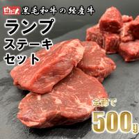 A0040 黒毛和牛の経産牛 ランプステーキセット(合計500g)【送料無料】