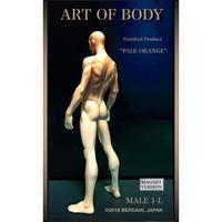 ART OF BODY MALE1-L(完成品)色:ペールオレンジ [マグネット版]※Japan only