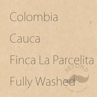 [残り僅か] Colombia Cauca Finca La Parcelita  Fully Washed - 200g