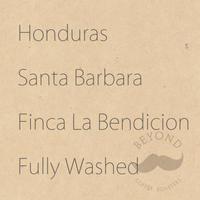 Honduras Santa Barbara Finca la Bendicion Fully Washed - 200g