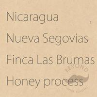 Nicaragua Nueva Segovias Finca Las Brumas Honey process - 200g