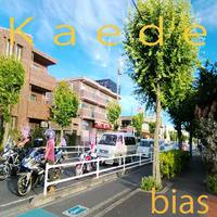 bias 「楓 (Kaede)」 ハイレゾ版 96Khz/24bit+歌詞+サムネイル