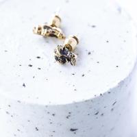 イミラックパラサイト隕石ピアス ダイヤモンド添え。【ペア】
