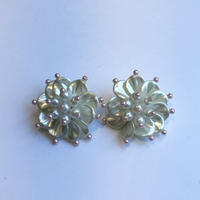 lady's shiny color earring