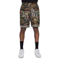 EPTM/reflector shorts CAMO