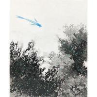 及川美沙「青い魚」
