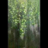 伊藤 茜 「雨簾 」