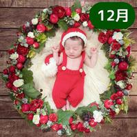 【12月予定日の方事前予約枠】白雪姫風クリスマスリース