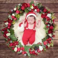 【11月予定日の方事前予約枠】白雪姫風クリスマスリース