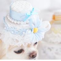 DAISY cake blue