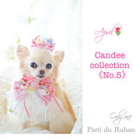 Candee collection《No.5》
